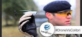 Colibrì batte drone: Black Hornet sconfitto dalla natura