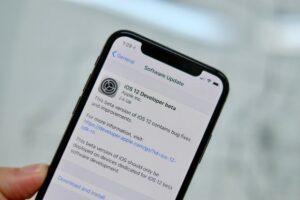 iOS 12.1 porta con nuove emoji