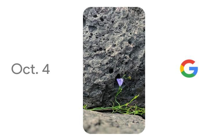 Pixel 4 – Arrivano i rumors